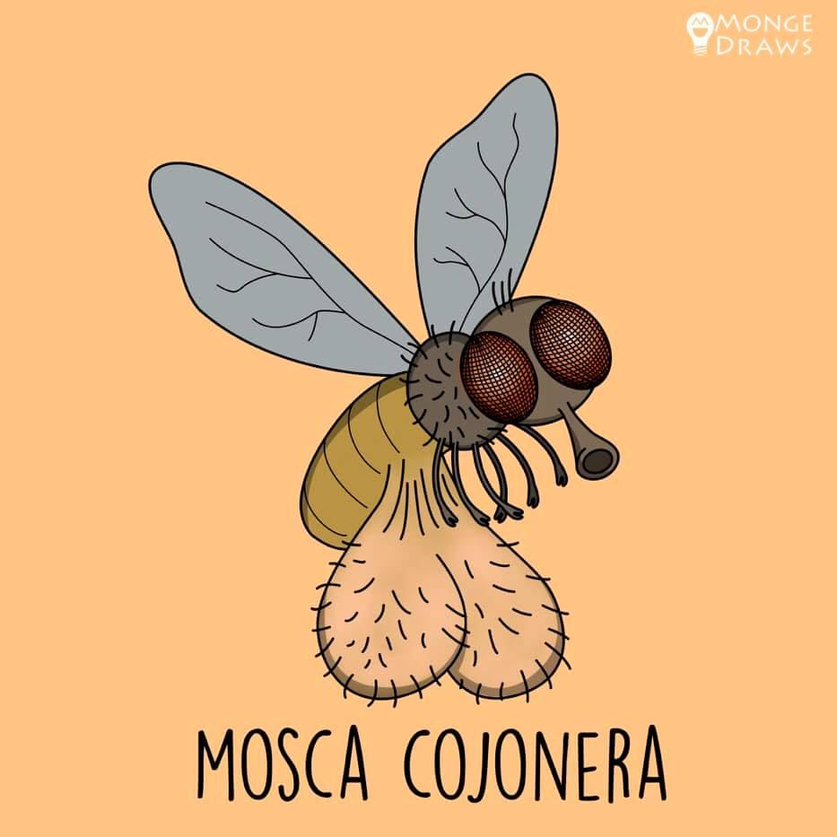 Una mosca cojonera
